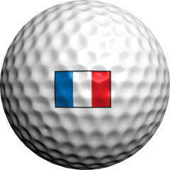 FRENCH_FLAG.png